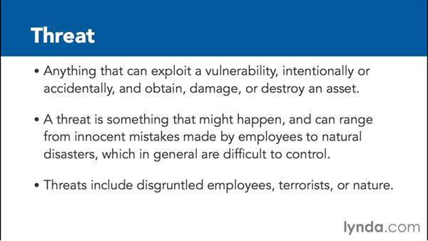 Evaluating risks, threats, and vulnerabilities