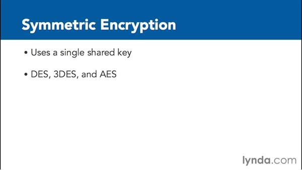 Exploring encryption and cryptographic techniques: Foundations of IT Security: Core Concepts