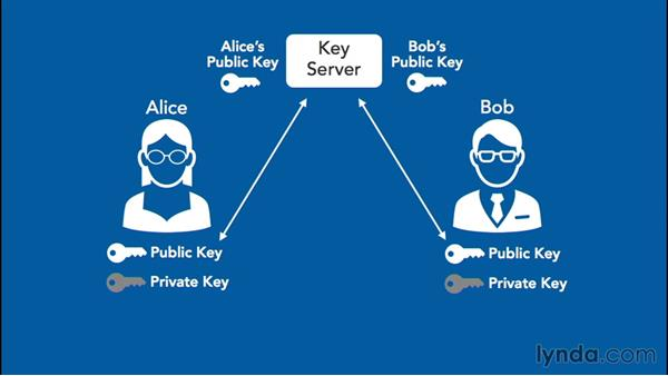 Differentiating between public and private key encryption: Foundations of IT Security: Core Concepts