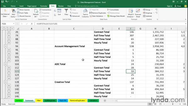 Inserting subtotals in a sorted list: Excel 2016 Essential Training