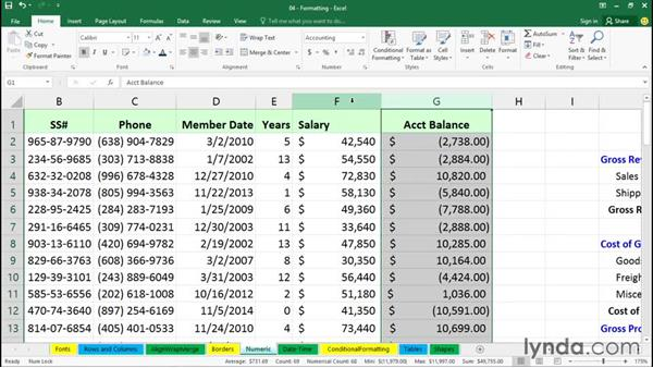 Exploring numeric and special formatting: Office 365: Excel Essential Training