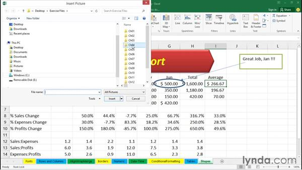 Inserting shapes, arrows, and other visual features: Office 365: Excel Essential Training