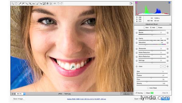 Whitening teeth: Exploring Adobe Camera Raw: Making Selective Adjustments