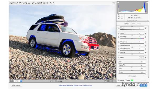 Painting away exposure problems: Exploring Adobe Camera Raw: Making Selective Adjustments
