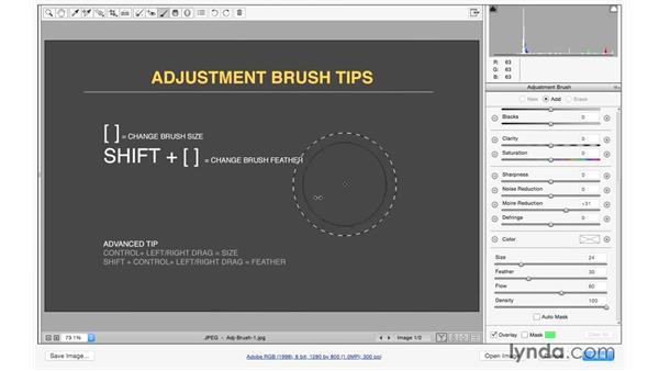 Using Adjustment Brush shortcuts: Exploring Adobe Camera Raw: Making Selective Adjustments