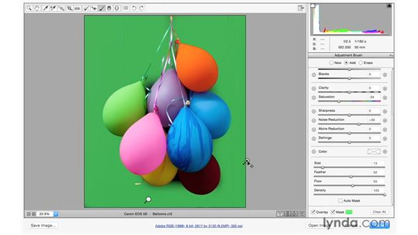 Making colors come alive: Exploring Adobe Camera Raw: Making Selective Adjustments