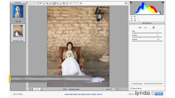 Removing larger distractions: Exploring Adobe Camera Raw: Making Selective Adjustments