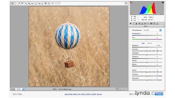 Challenge: Removing small details: Exploring Adobe Camera Raw: Making Selective Adjustments