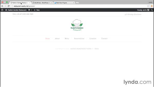 Finding plugins that meet your needs: WordPress and Genesis DIY: Restaurant Website
