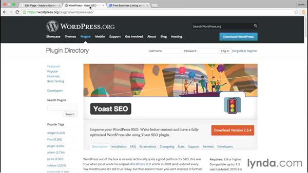 Getting people to visit your site: WordPress and Genesis DIY: Restaurant Website