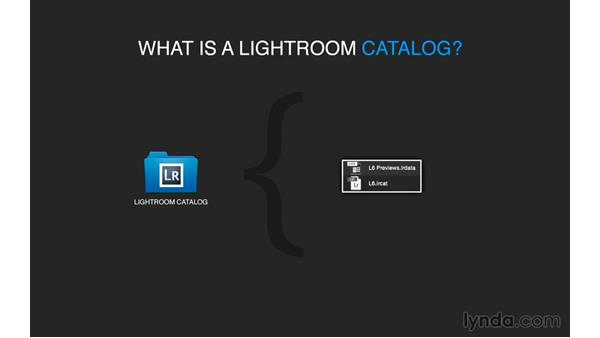 What is a catalog?: Exploring Lightroom: Managing Photo Catalogs