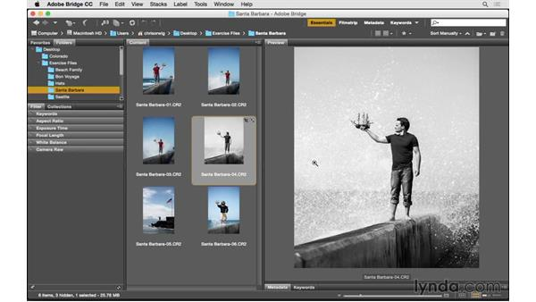 What to consider when choosing XMP settings: Exploring Lightroom: Managing Photo Catalogs