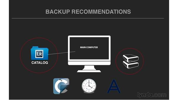 Using software for auto backup: Exploring Lightroom: Managing Photo Catalogs