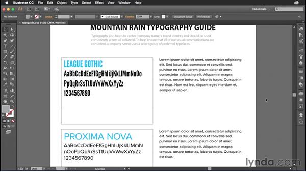 Developing a typography guide: Creating Brand Identity Assets