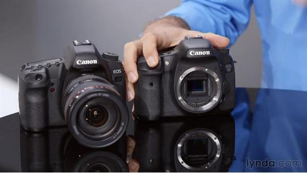 Exploring the basics of a DSLR: Introduction to Photography