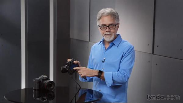 Understanding mirrorless cameras: Introduction to Photography
