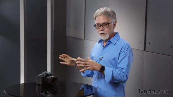 Understanding the light meter in the camera: Introduction to Photography