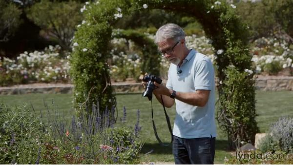 Understanding when to use image review: Introduction to Photography