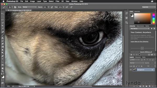 Using temporary modifier keys: Photoshop CC Power Shortcuts