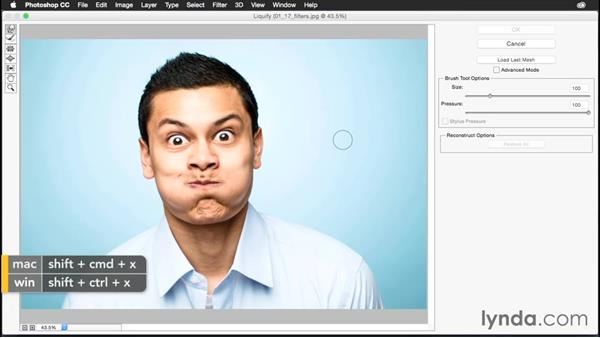 Using specific filter commands: Photoshop CC Power Shortcuts