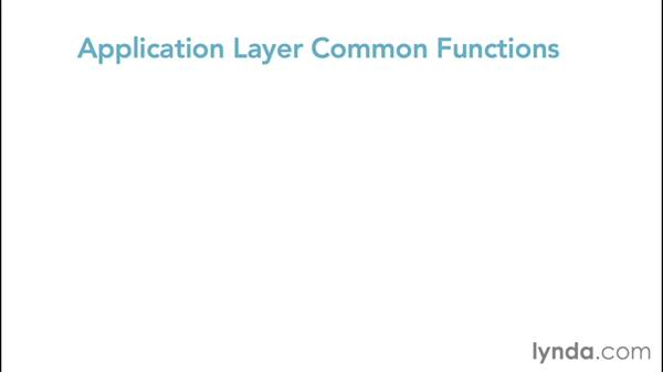 Understanding Layer 7: The application layer: Foundations of Networking: Networking Basics