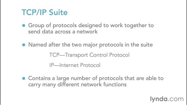 Understanding the TCP/IP suite: Foundations of Networking: Networking Basics