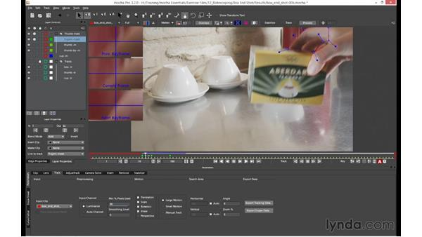 Mixing shape types on a layer: mocha 4 Essential Training