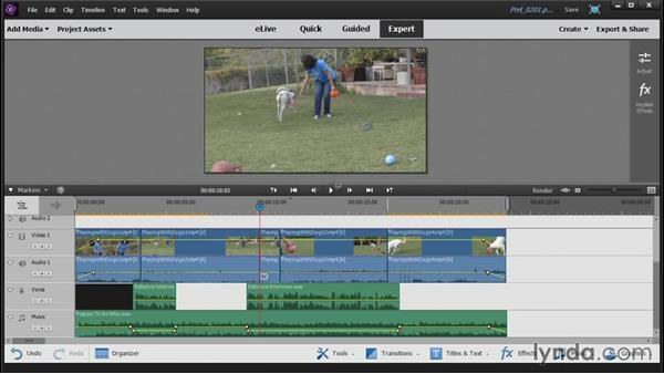 Editing with Quick view vs. editing in Expert view: Up and Running with Premiere Elements 14