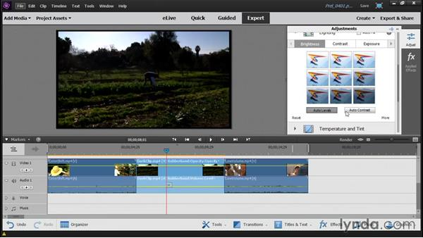 Adjusting color, lighting, and audio: Up and Running with Premiere Elements 14