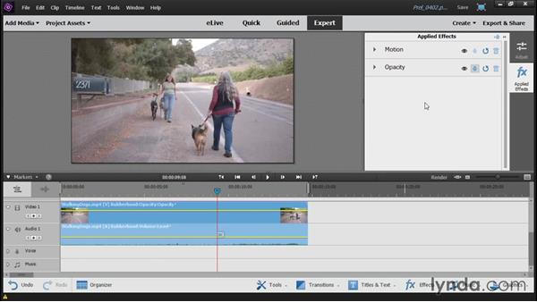 Adding and customizing a video effect: Up and Running with Premiere Elements 14