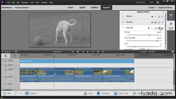 Applying effects and adjustments using adjustment layers: Up and Running with Premiere Elements 14
