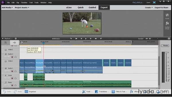 The Audio View Workspace: Up and Running with Premiere Elements 14