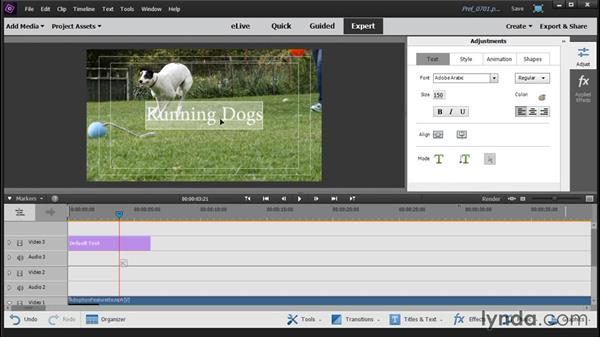 Adding and customizing a title: Up and Running with Premiere Elements 14