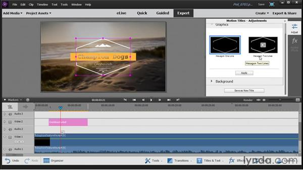 Creating titles with title themes: Up and Running with Premiere Elements 14
