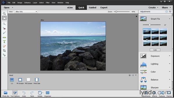 Working in Quick Edit: Photoshop Elements 14 Essential Training
