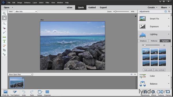 Adjusting lighting: Photoshop Elements 14 Essential Training