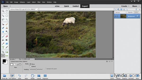 Removing unwanted content: Photoshop Elements 14 Essential Training