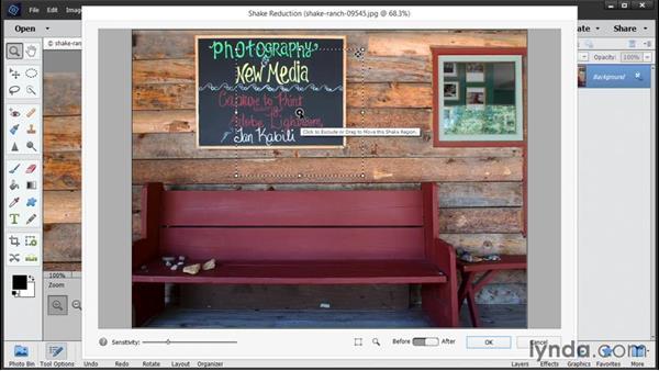 Reducing camera shake: Photoshop Elements 14 Essential Training
