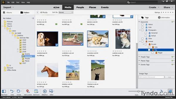 Applying keyword tags: Photoshop Elements 14 Essential Training