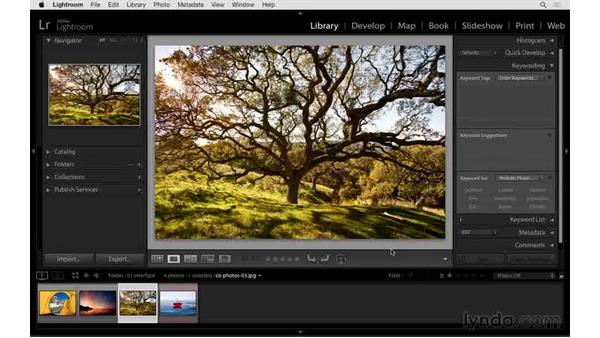 How to show and hide the panels: Exploring Lightroom: Power Shortcuts