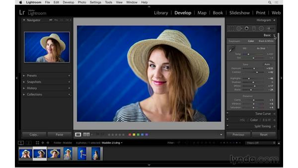 Reviewing the essential panel shortcuts: Exploring Lightroom: Power Shortcuts