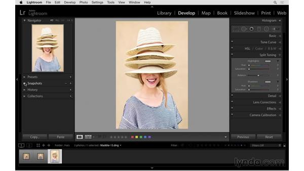 Creating snapshots and virtual copies: Exploring Lightroom: Power Shortcuts