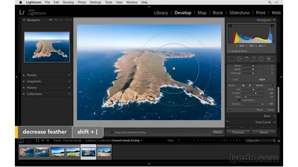 Customizing the Adjustment Brush size, Feather, and Flow: Exploring Lightroom: Power Shortcuts