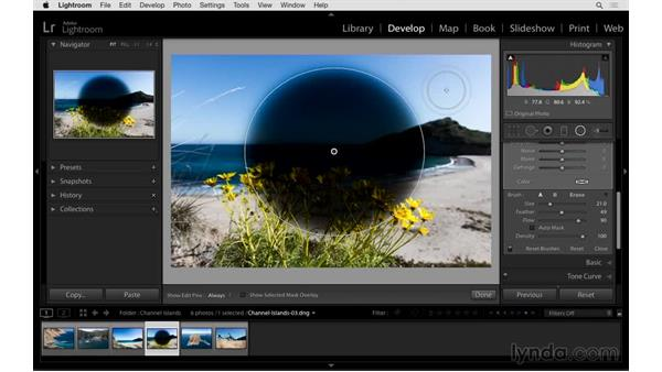 Accessing the brush inside of the Graduated and Radial Filters: Exploring Lightroom: Power Shortcuts