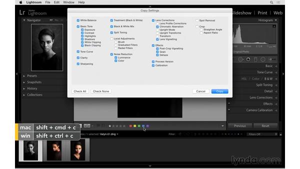 Copying and pasting settings: Exploring Lightroom: Power Shortcuts