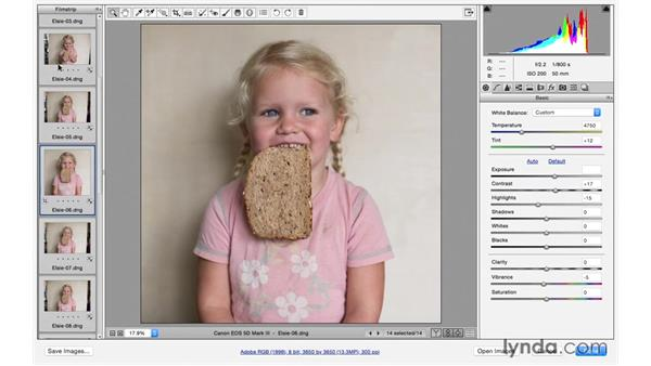 Synchronizing settings across multiple files: Exploring Adobe Camera Raw: Workflow Power Tips