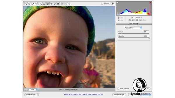 Introduction: Photoshop CS4 Portrait Retouching Essential Training