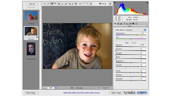 White balancing in Adobe Camera Raw: Photoshop CS4 Portrait Retouching Essential Training