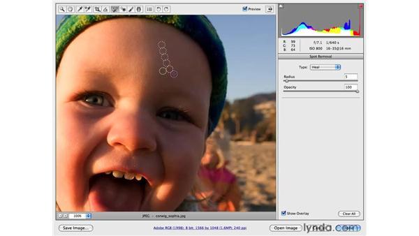 Using the Spot Removal tool: Photoshop CS4 Portrait Retouching Essential Training