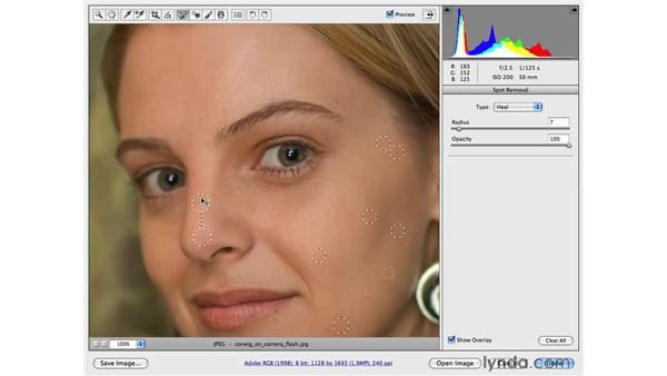Reducing blemishes and skin shine: Photoshop CS4 Portrait Retouching Essential Training